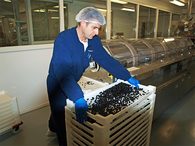 Man met grote plastic bakken, die geplaatst worden in een speciaal droogcompartiment