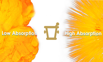 The Secrets of CoQ10 Absorption